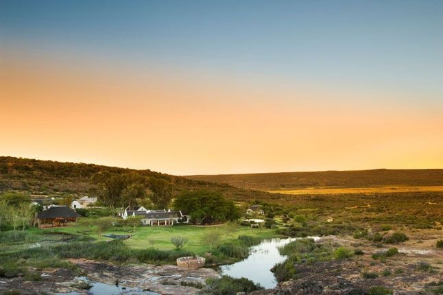 Bushman's Kloof, South Africa - The Gold List | Best for Food | Conde Nast Traveller