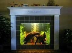 25 best ideas about cool fish on pinterest pretty fish for Fish tank fireplace
