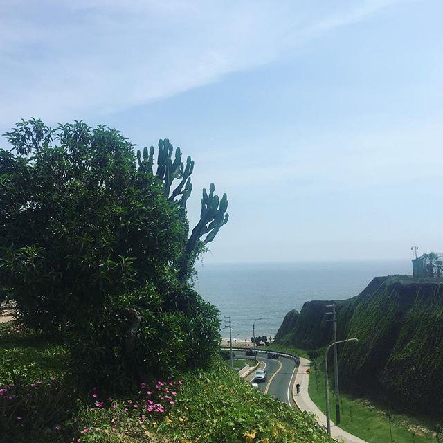 🦀 #walk #summer #peru #lima #ocean #cliff #afternoon #goodviebs #green #blue