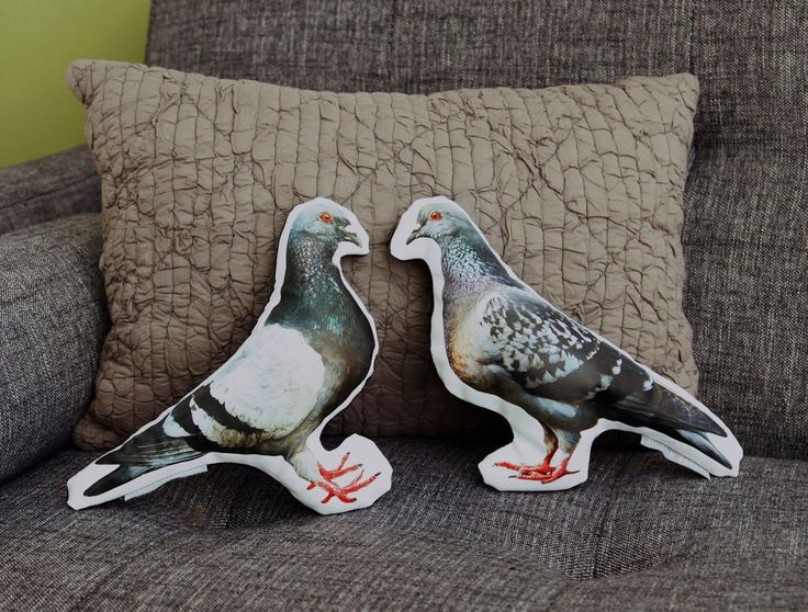 Pigeon pillows from intheseam https://www.etsy.com/ca/listing/76092793/pigeon-faces-right-printed-pillow?ref=related-1