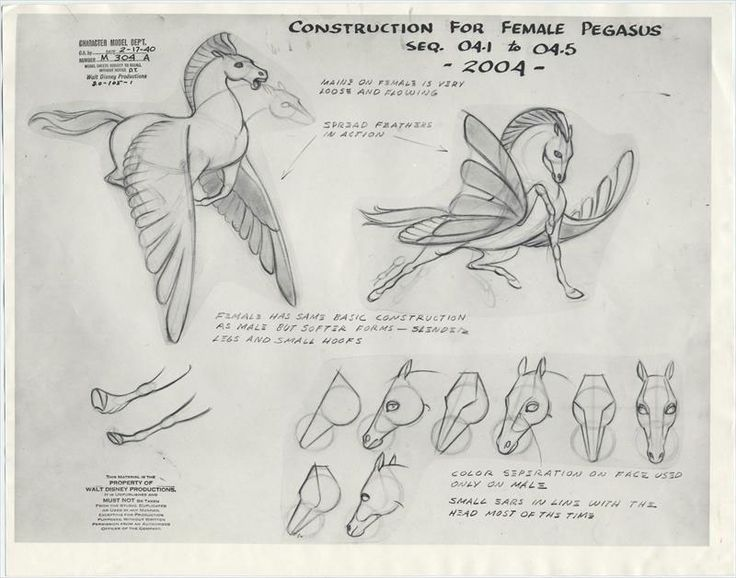 http://the-disney-elite.tumblr.com/post/109428062123/original-model-sheets-for-the-pegasus-family-in