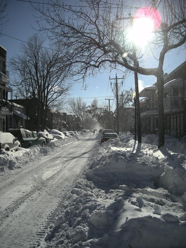 After the storm, Montreal, Canada Copyright: Hugo Desrosiers
