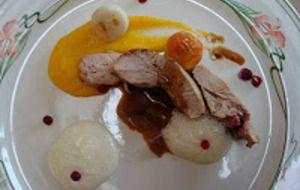 Fazant met pompoencrème / veenbessen/ appel /witlof