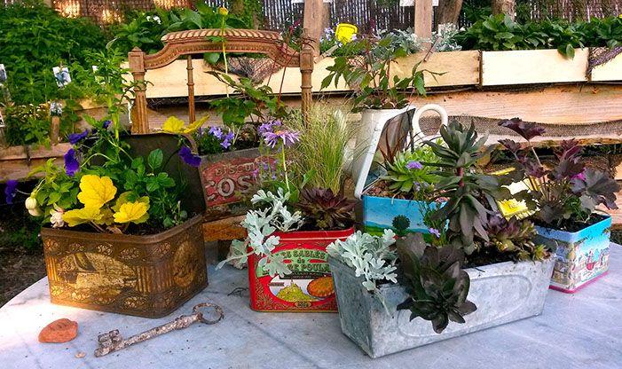 """composition de plantes vivaces jardins de plantes vivaces -""""Les Jardins des Hurlevents """" http://www.plantes-vivaces-hurlevents.com/"""