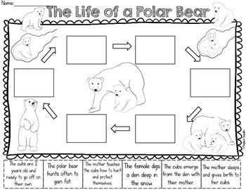 Polar Bears Unit, Common Core Reading and Science