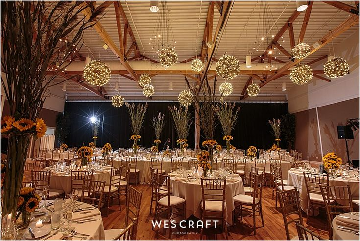 Metropolis Ballroom Arlington Heights Illinois Wedding By Elena Bazini Photography Pinterest