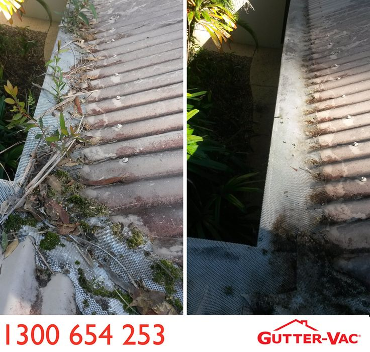 A gutter guard fail! This photo is from Gutter-Vac Sunshine Coast South. The gutter in this image had gutter guard installed, and look at the mess that it is in!  This photo shows that even if you have a gutter guard in place, you still need to have your gutters cleaned. Gutter-Vac Sunshine Coast South can help you with that, as they offer professional and courteous vacuum cleaning of commercial and domestic gutters, roofs, solar PV panels, ceiling cavities and downpipes. Gutter-Vac Sunshine…