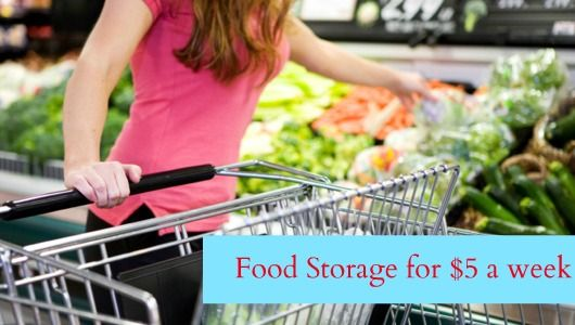 Build Your Food Storage for as little as $5 a week! (plus a FREE printable list!) -