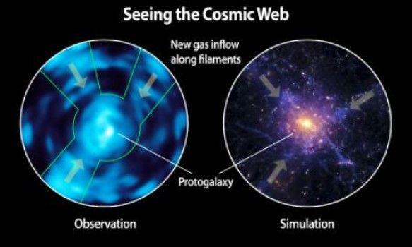 Seeing the Cosmic Web. The intergalactic medium unveiled. Very Wholeo, indeed.