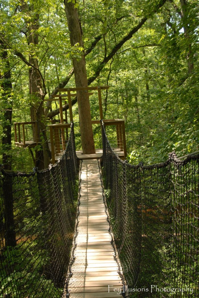 Lynches River State Park - This gorgeous state park features hiking trails, splash pads, parks for the children, as well as a teaching center and canopy walk. And, admittance to this park is absolutely free!