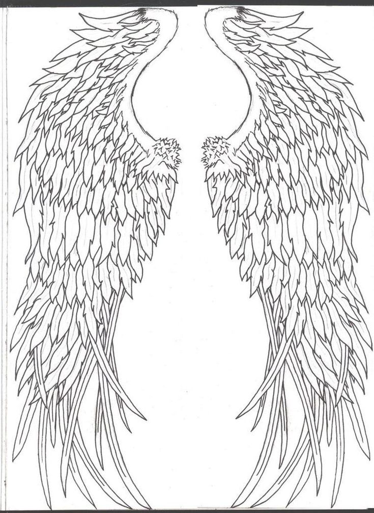 Angel wings i would love to get these very small for Badass angel tattoos