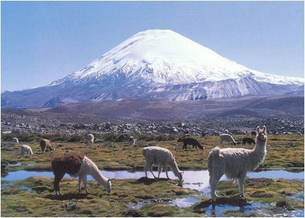 Arica y Parinacota en Chile