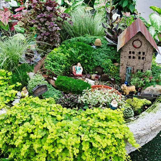 ideal plants for a fairy garden - the best directions i have