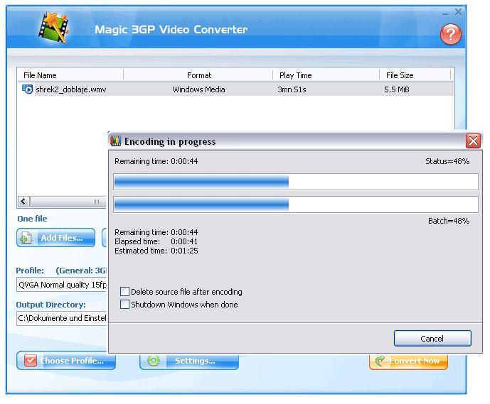 Magic video converter 8 0