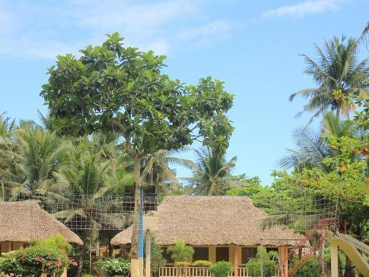 Amor Farm Beach Resort in Donsol, Philippines.  Travel smarter with Agoda.com.