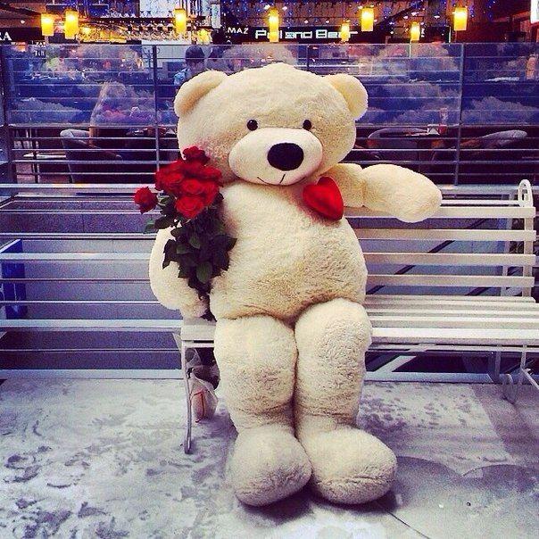 173 Best Huggable Teddy Bears Images On Pinterest