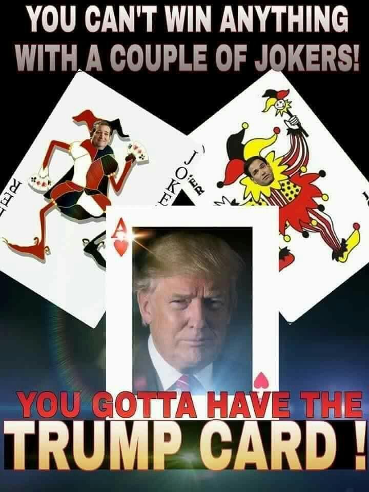 Trump 2016!!!!!!
