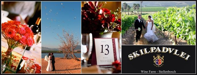 Skilpadvlei Wine Farm - Cape Town Wedding Venues
