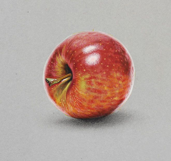 apple realistic drawing by marcello barenghi