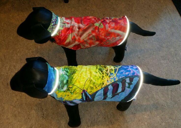 Anelia-art dog jackets