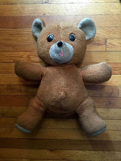 Picture of Teddy Bear Restoration