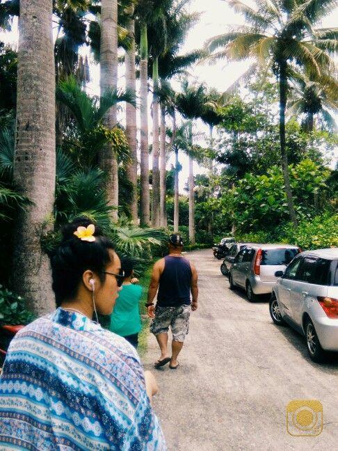 Making our way to The Hidden Spirit Garden