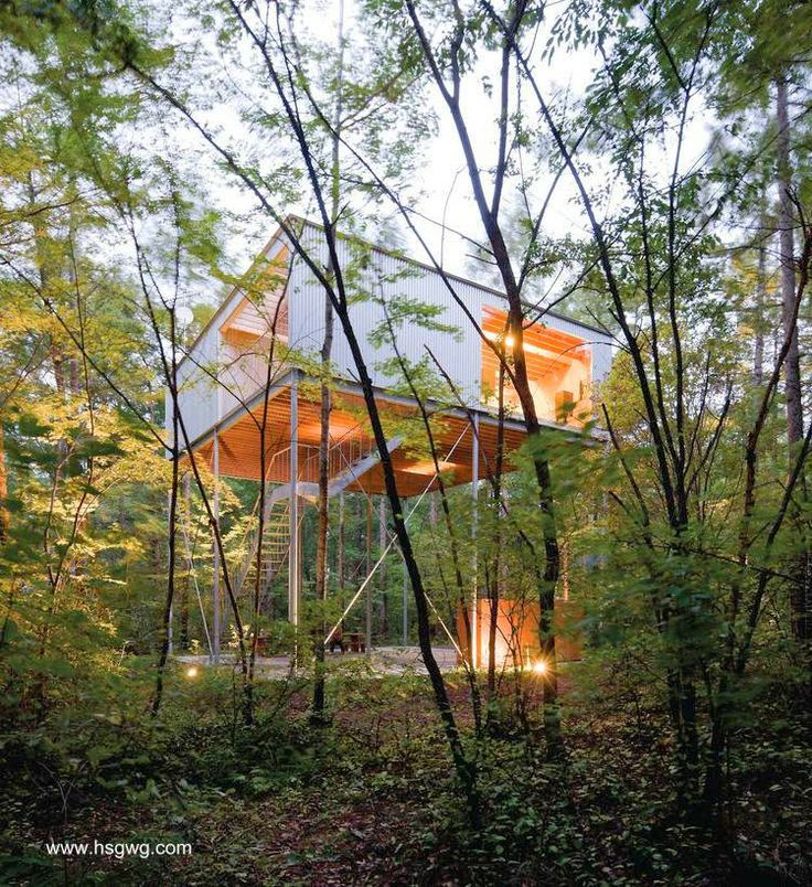 Modern Forest House: 25+ Best Ideas About Modern Tree House On Pinterest
