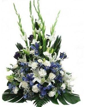 Iris y liluims