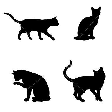 best 25+ black cat silhouette ideas on pinterest | black cat