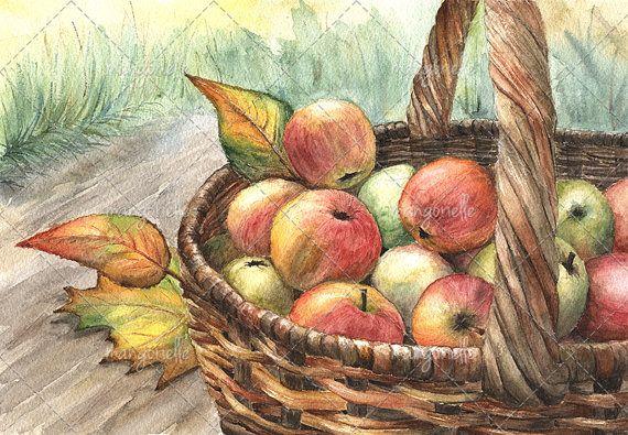 Sweet autumn apples watercolor :) #autumn #apples #watercolor #акварель #осень #натюрморт