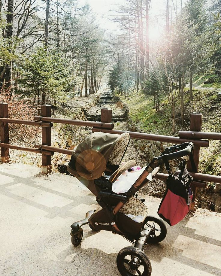 Nature never goes out of style!   #natute #outdoors #explore #excursion #trip #summer #holidays #green #stroll #familytime #baby #stroller #pushchair #poussette #kinderwagen #cochecito #concord #concordneo #repost