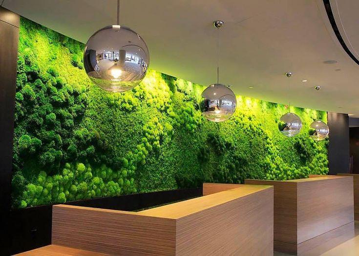 MAGNÍFICOS QUADROS BOTÂNICOS: Os lindos painéis ou quadros utilizam madeira recuperada; são feitos de musgos e plantas reais. #wall #frame #quadro #natureza #wallart #nature