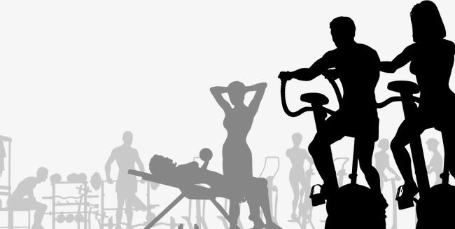 Fitness Silhouette Figures Fitness Work Out Movement Png Transparent Clipart Image And Psd File For Free Download Silhouette Weekly Workout Routines Workout Routine