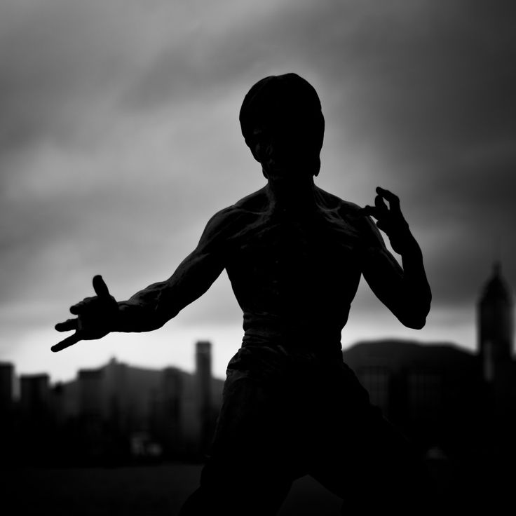 Bruce Lee (Chinese: 李小龍) statue in Avenue of Stars, photography by Michael Margolis on flickr.  #brucelee #leejunfan #statue #sculpture #silhouette #blackandwhite #hongkong #victoriaharbour #tsimshatsui #china #asia #avenueofstars #martialarts #martialartist #kungfu #wingchun #jeetkunedo #jkd #boxing #kickboxing #taekwondo #jujitsu #augsburg #munich #münchen #stuttgart