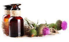 (Zentrum der Gesundheit) – Heilpflanzen werden oft unterschätzt. Manchmal nutzt…