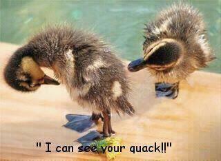 Quack