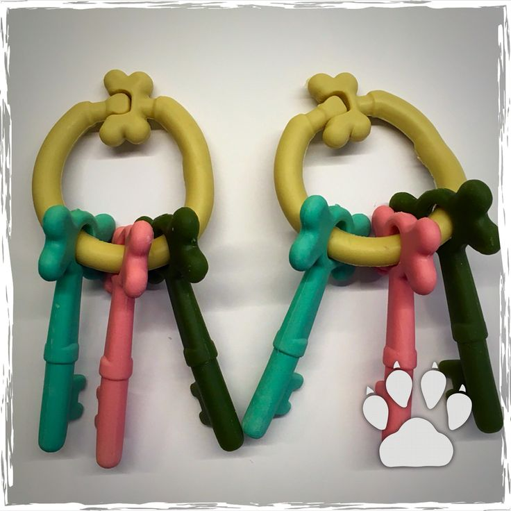 Tanti nuovi snack for dog con solo frutta da Minu' Pet Shop