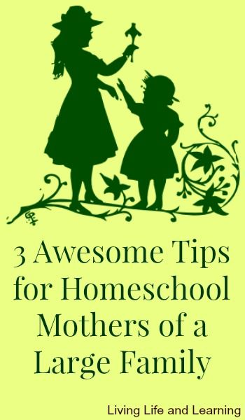 3 tips for homeschool mothers of a large family