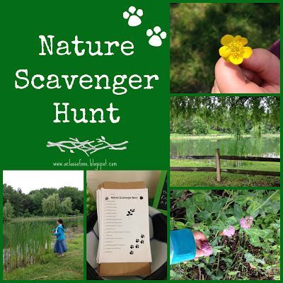 Nature Scavenger Hunt for Kids that you can do in your own backyard with FREE downloadable Printable lists