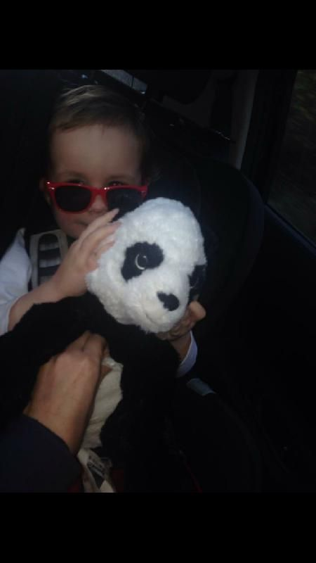 Lost on 18 Jun. 2016 @ Meadowhall, Sheffield, England . Lost a well loved cuddly panda soft toy at the outdoor football screen at Meadowhall oasis. One little girl very upset Visit: https://whiteboomerang.com/lostteddy/msg/4tn3tj (Posted by Jess on 19 Jun. 2016)