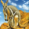 Free Online Games,Play Best Online Games, Free Flash Games - onlinegamessack - Kangaroos In The Mountains Slide Puzzle