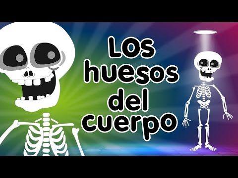 Los Huesos del Cuerpo - Canciones Infantiles - YouTube