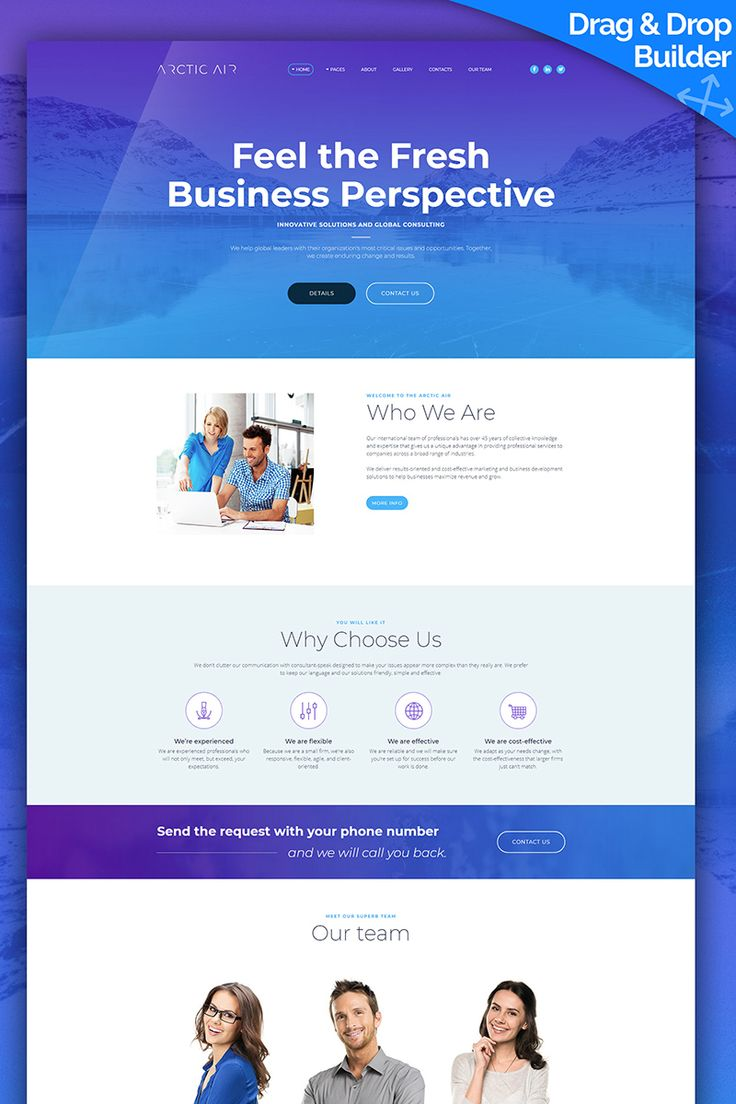 Arctic - Business Startup Moto CMS 3 Template #65555