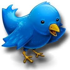 learn to add flying twitter bird to your blog