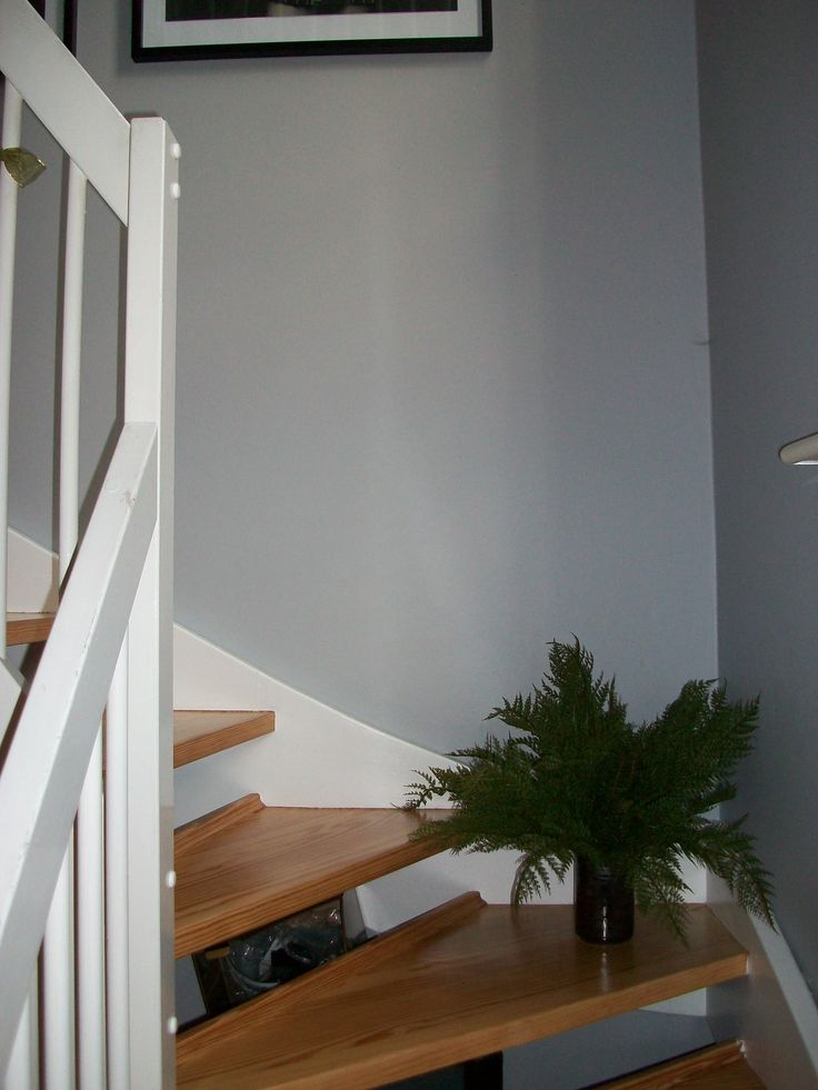 Gray Bedroom Paint Ideas: Faux Fern Bunched In Vase By Abigail Ahern In My Staircase