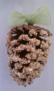 Pine cone bird feeder, using items you have around the house. Great for kids