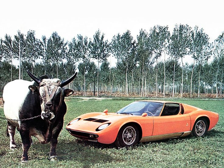 bertones 1966 lamborghini miura p400 prototype