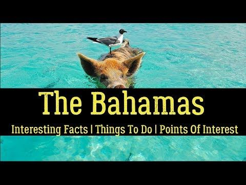 28 Interesting Facts About The Bahamas And Its Flag, Capital, And Dollar