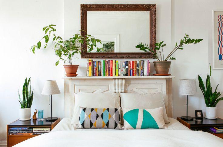 Plantas para interiores. Da esquerda para a direita: Espada-de-São-Jorge; Dracena-bambu; Brilhante; Espada-de-São-Jorge.