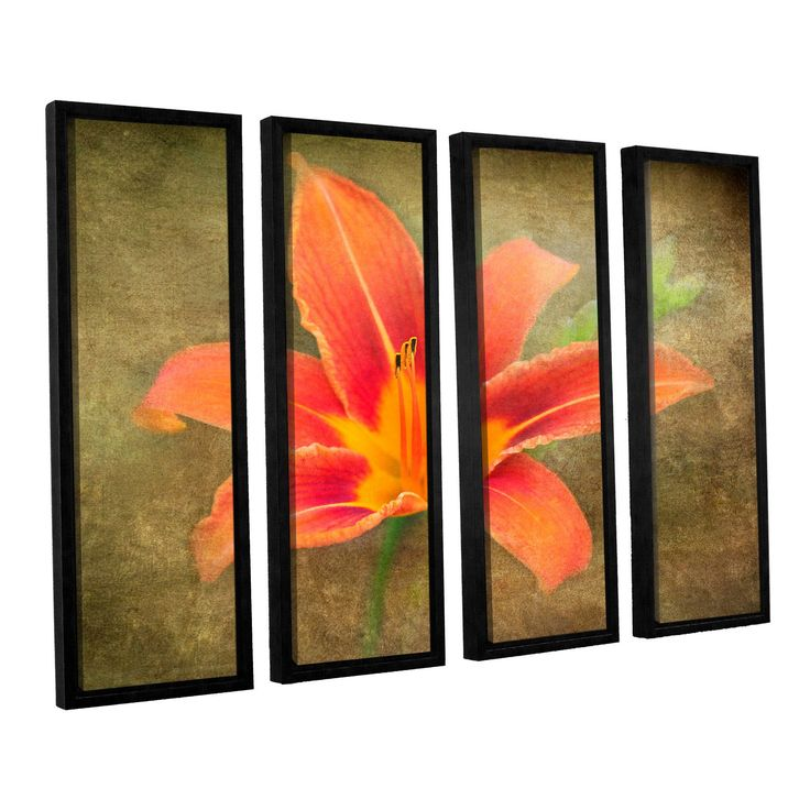 Flowers In Focus 4 by Antonio Raggio 4 Piece Floater Framed Canvas Set